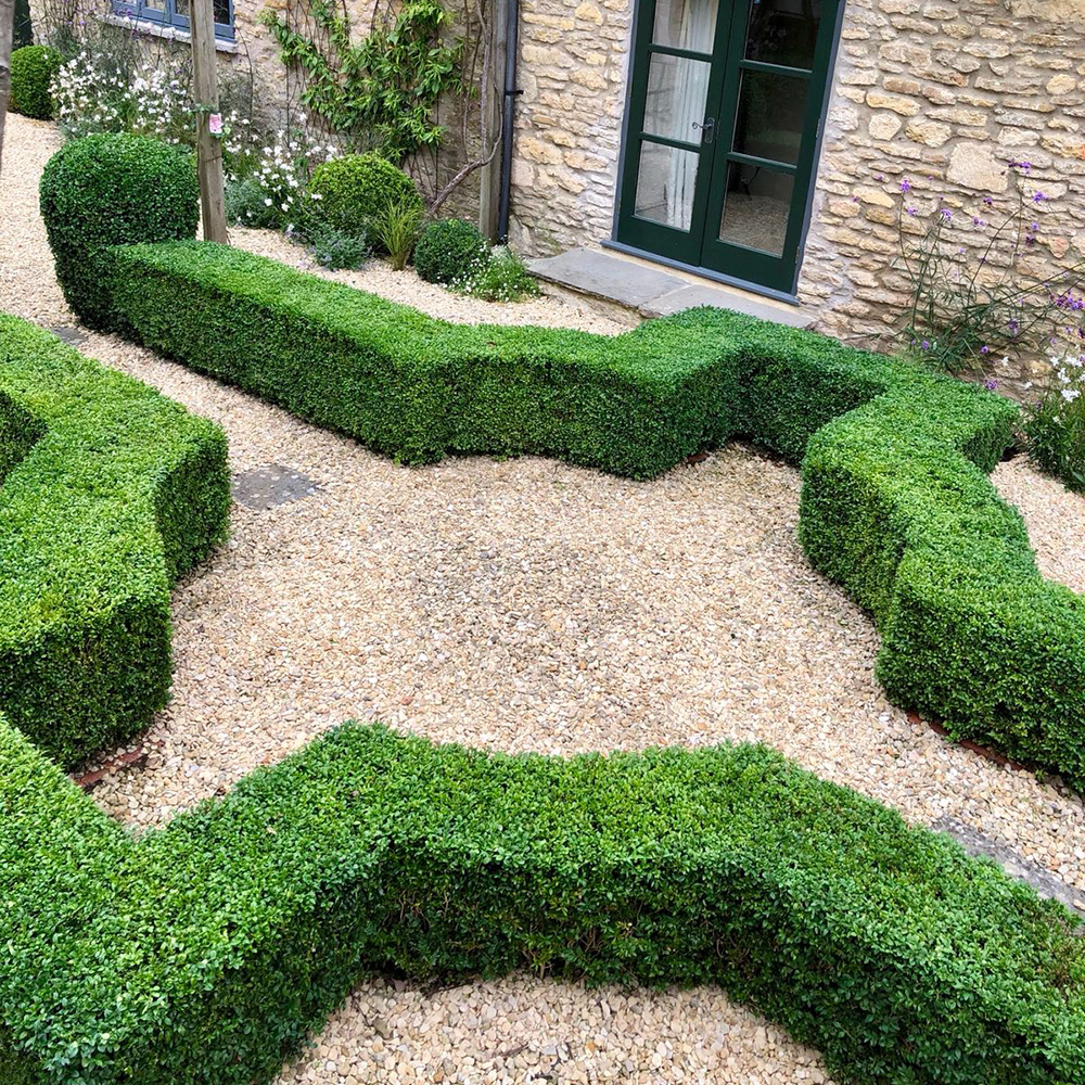 Bath Garden Designs garden maintenance service