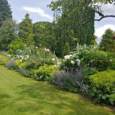 Large border of perennial planting by Bath Garden Design