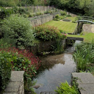 Lush water planting and lawns in country garden