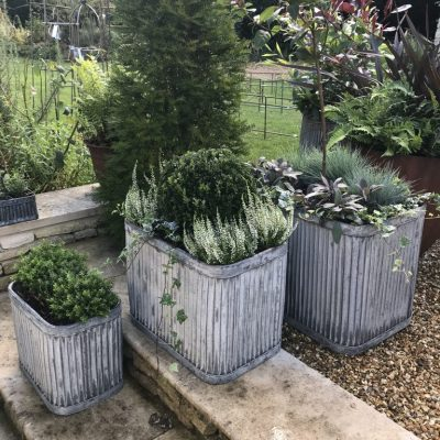 Zinc containers with winter seasonal planting