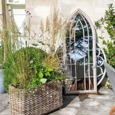Planted containers with box ball and grasses