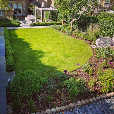Contemporary medium sized garden